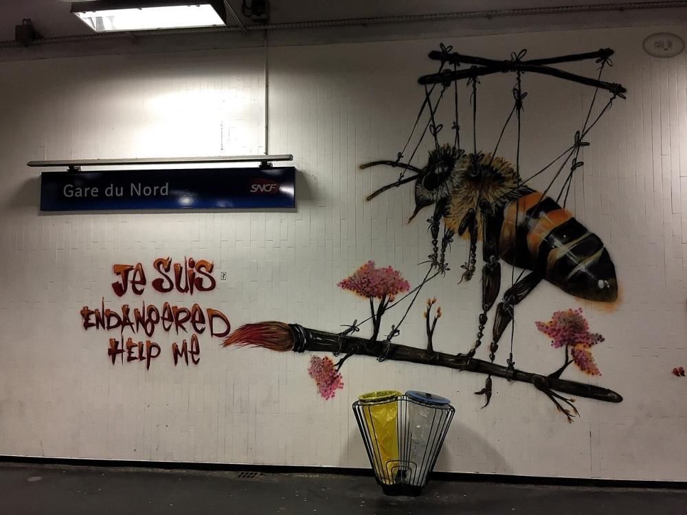 street,quai36,gare du nord,paris