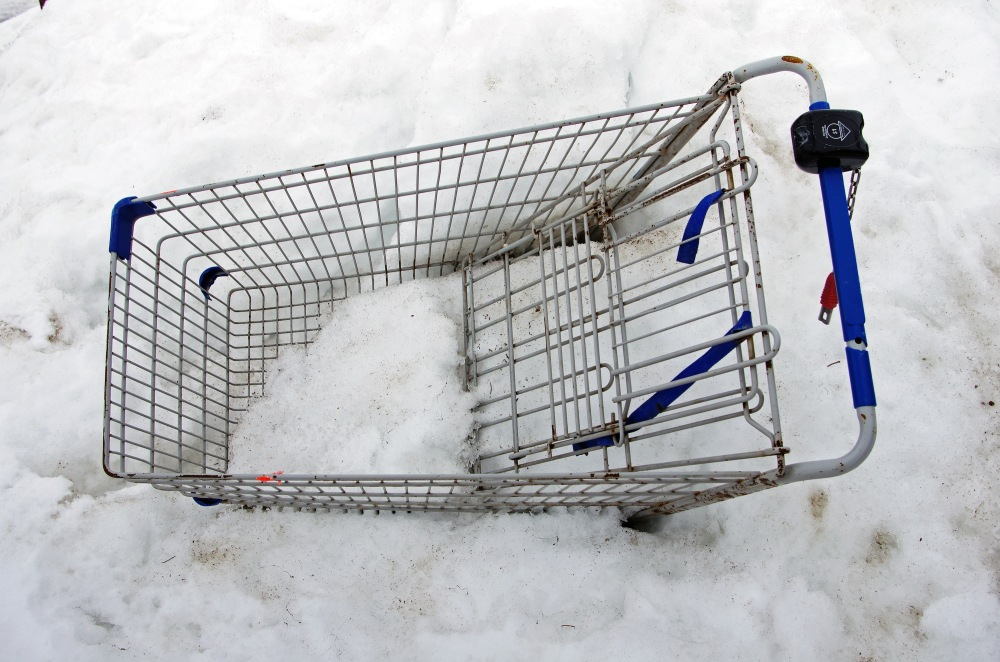 Shopping  Cart - 151