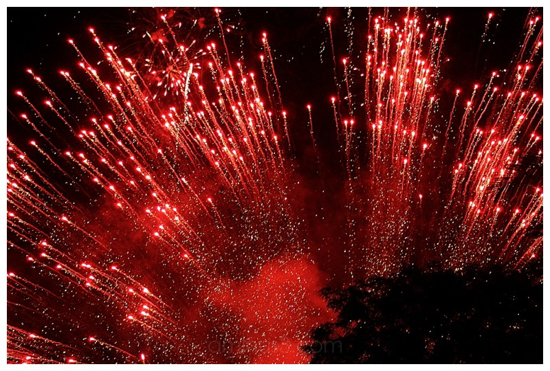 Red Explosion Red Explosion