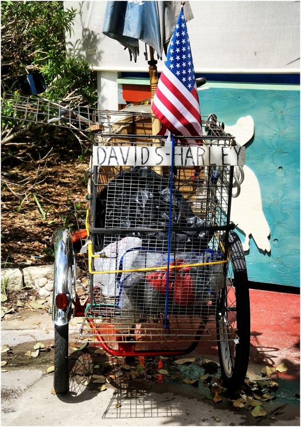 David's Harley...