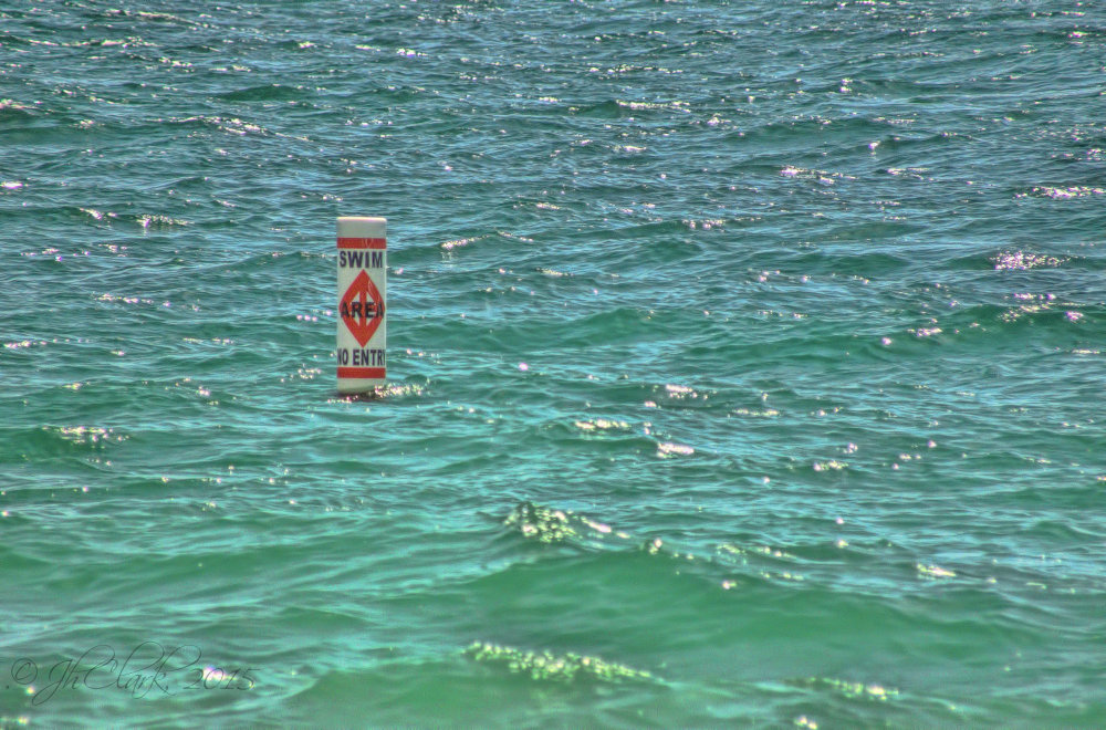 Swim Area?