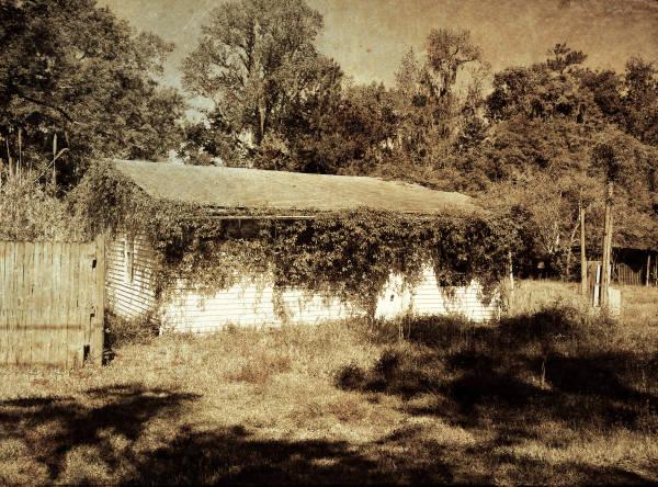 Grown over, Corliss Road II