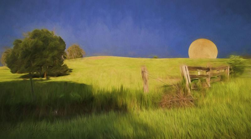 Moonrise w/a Georgia O'Keeffe touch...