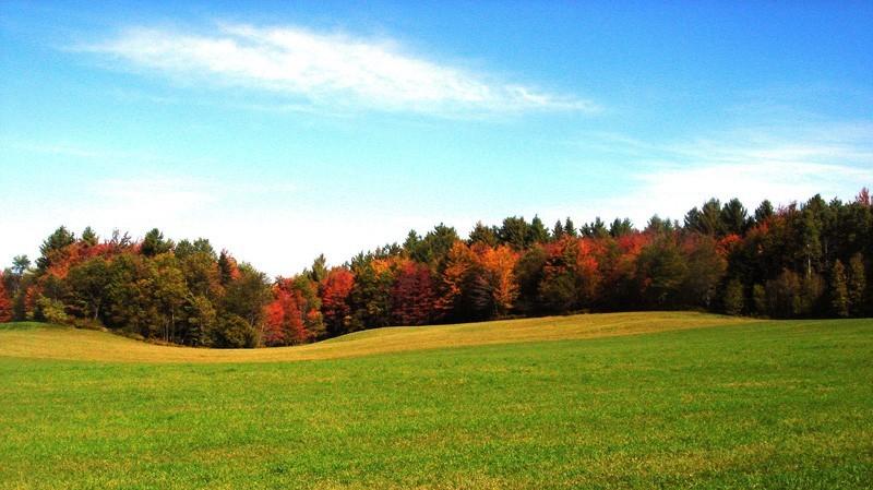 couleur d'automne 2