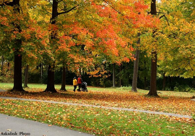 Remembering Fall #4