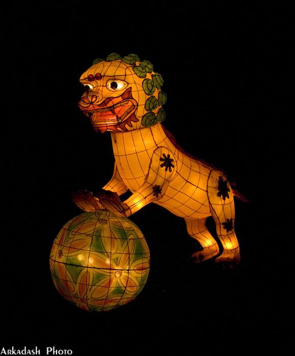 Chinese Lanterns #4