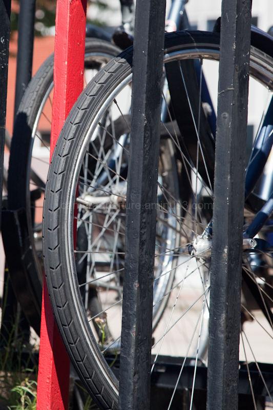 Bike wheel in the railing