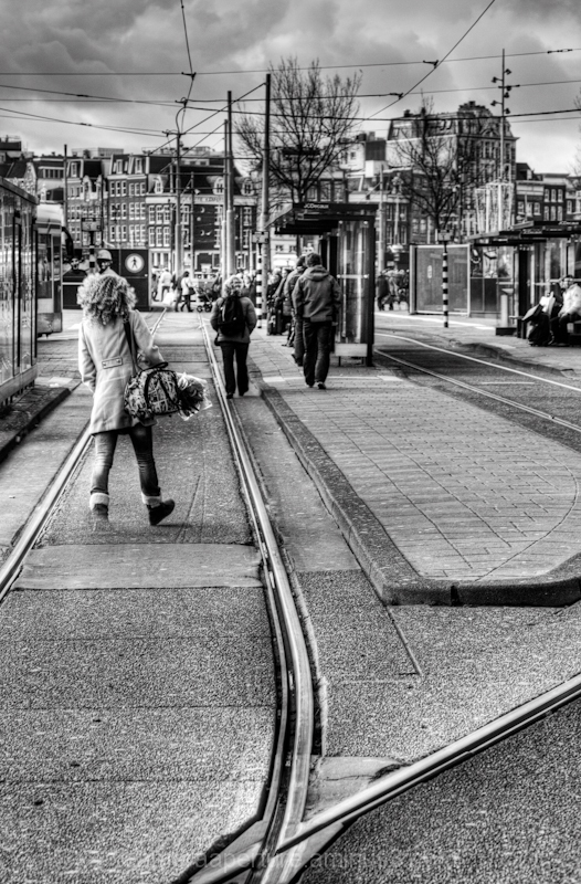 Tram tracks in the city of Amsterdam