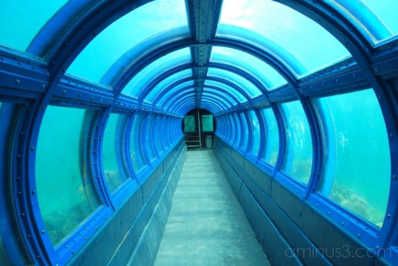 Undersea tunnel