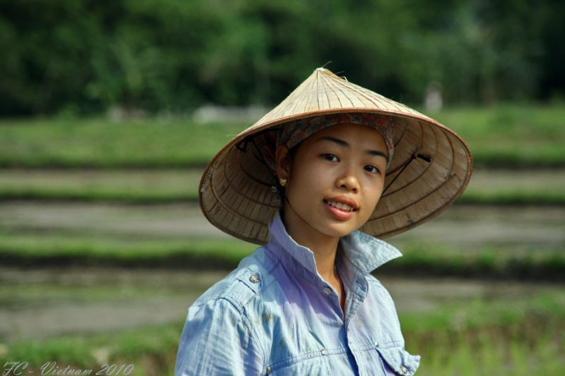 Viet Nam 2010 #10
