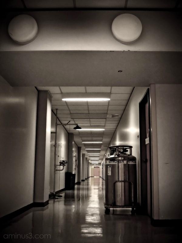 hallway nitrogen shower