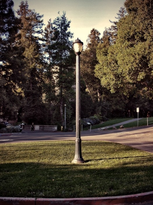 lamp post