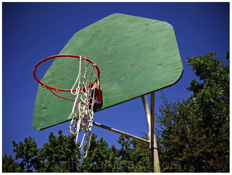 basketball hoop net backboard