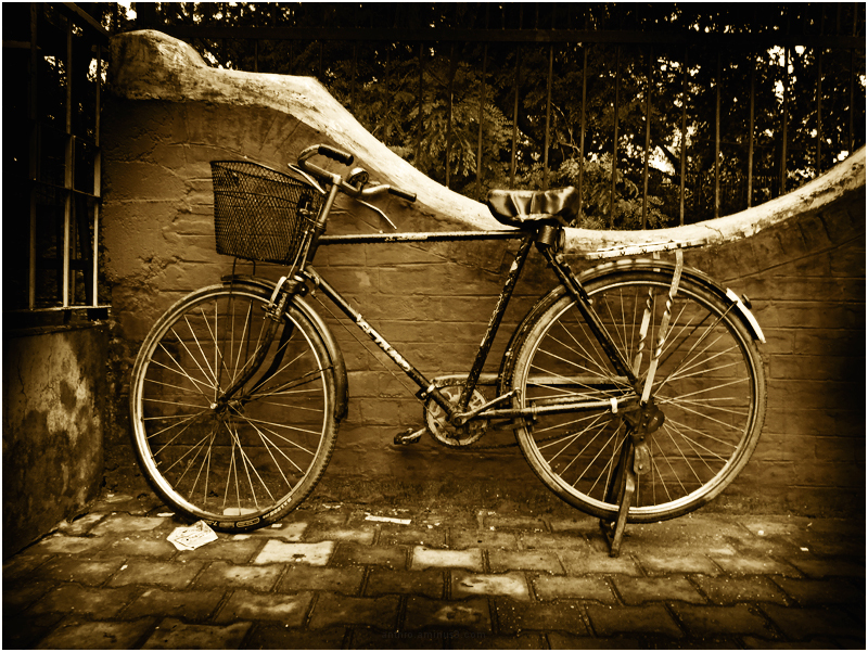 untitled atm guard's bicycle