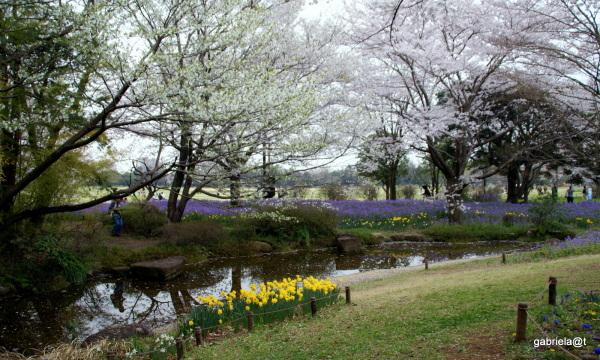 The Secret Strem Garden=The Romantic Grove