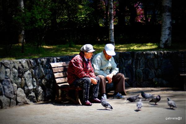 People and birds, Nakajima Park, Sapporo,Hokkaido