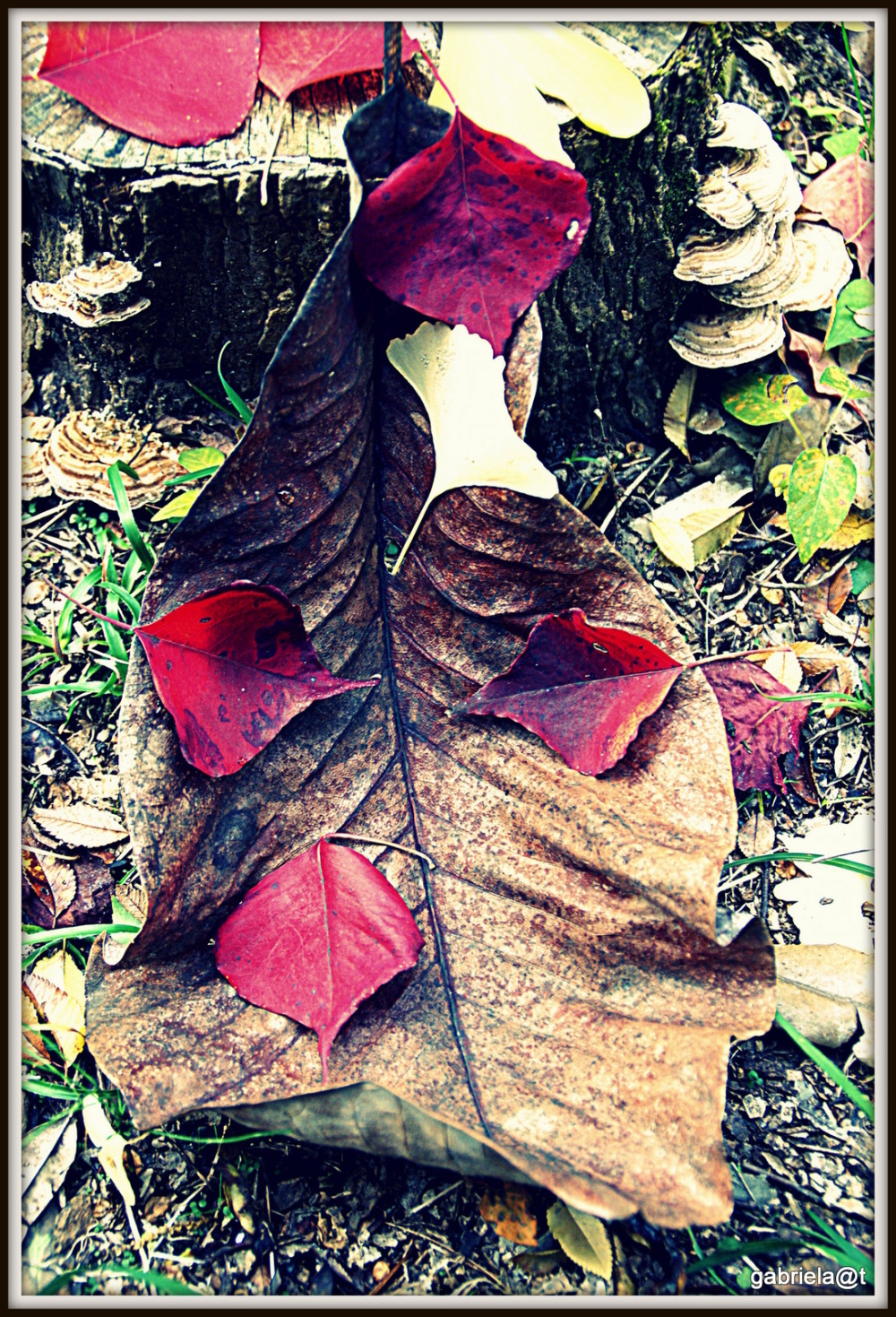 Digital autumn art with leaves