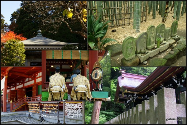 Culture Week - Temples & Shrines in Japan