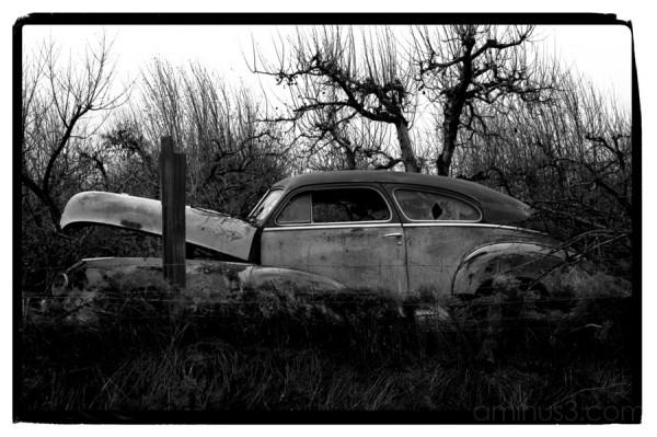 Thomas Krueger Fine Art Photography