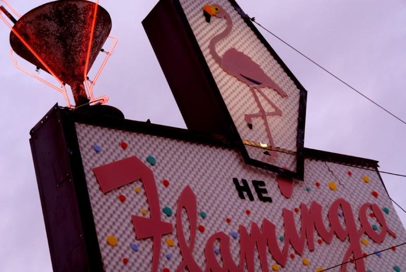 he flamingo rio vista california