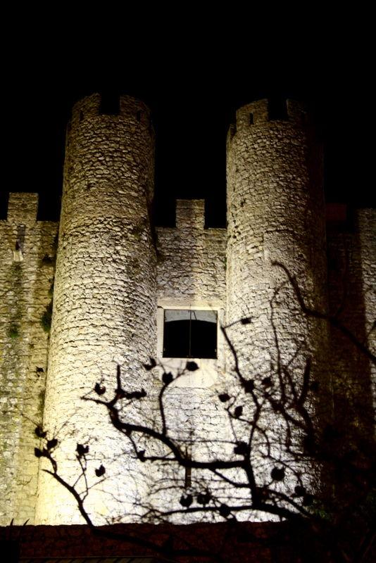Castelo de Óbidos II