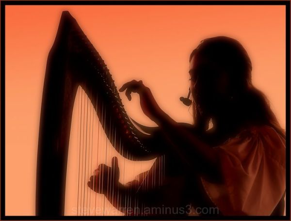 Strumming the Strings