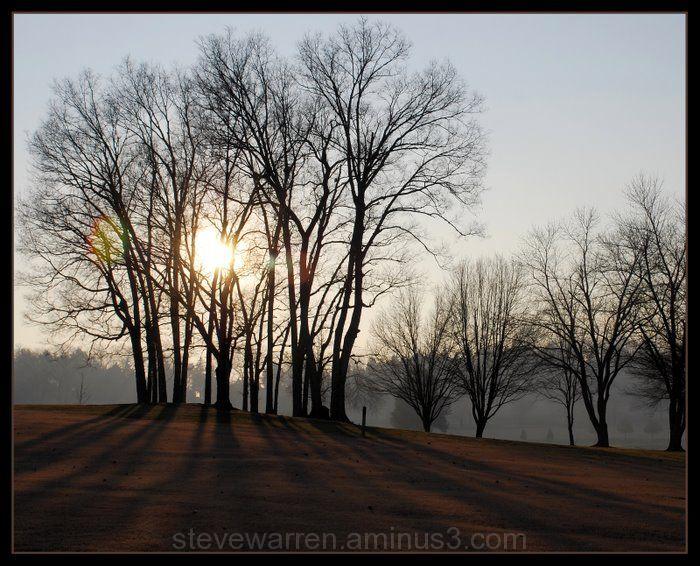 Long Shadows at Sunset