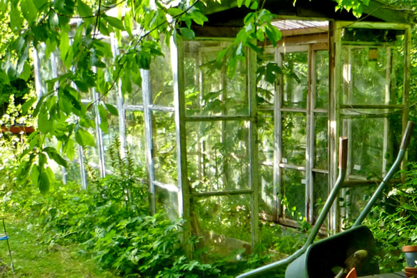 The greenhouse.
