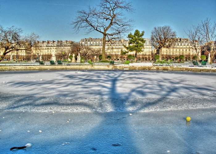 Paris ,jardin,arbre,tree,ombre,shadow,snow,neige