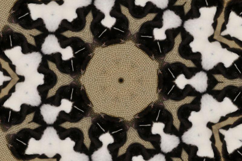 KALEIDOSCOPE 1