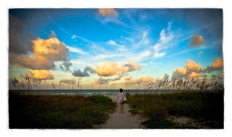 more dreamy miami beach