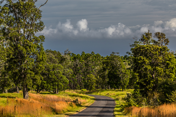 big island country road