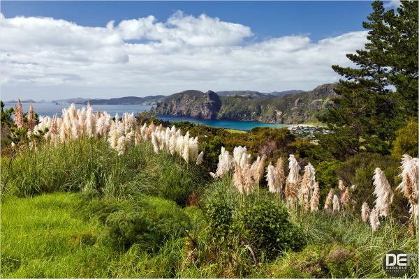 Whangaroa Bay