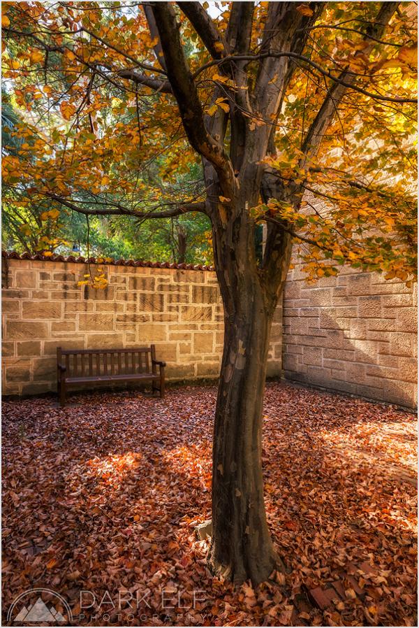 touch of Autumn magic