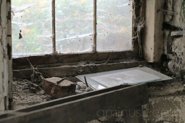 Inside the Barn Window