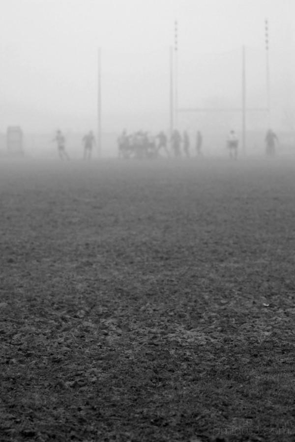 Foggy rugby