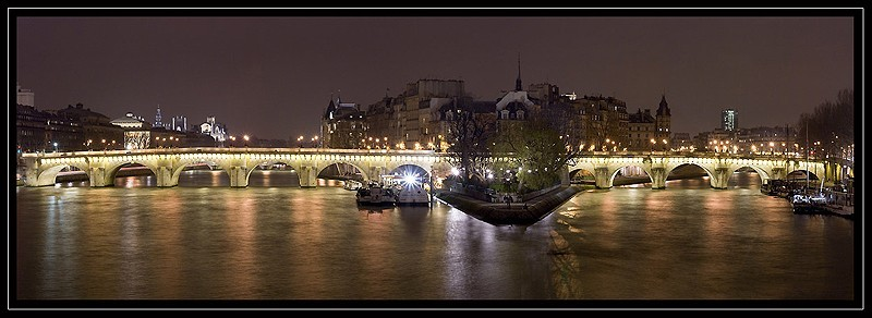 "the ""pont neuf"" in Paris"