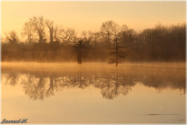 Another misty morning
