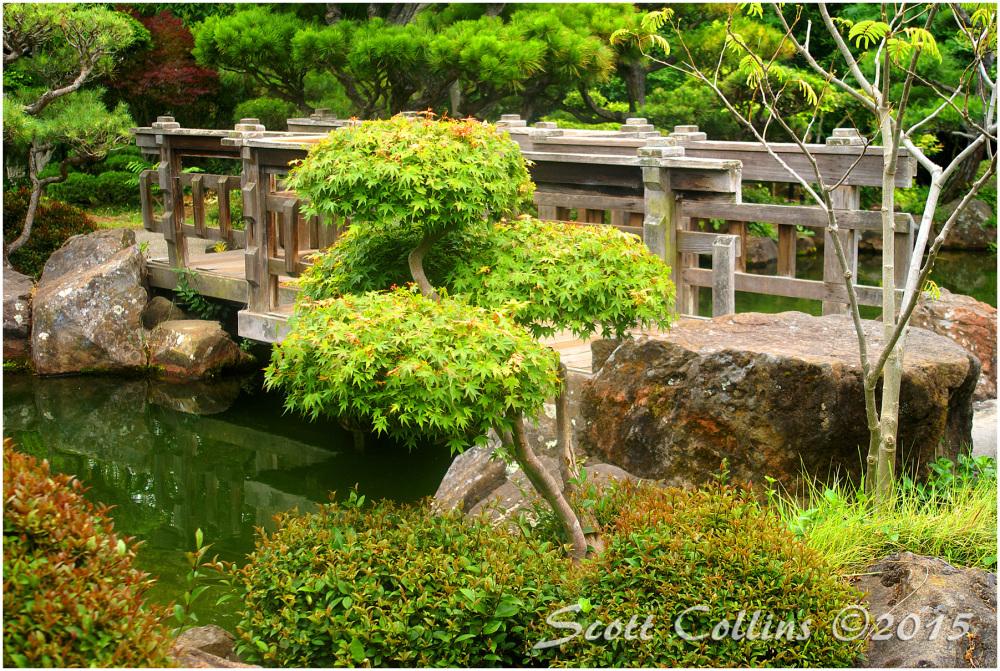 Japanese Gardens 03