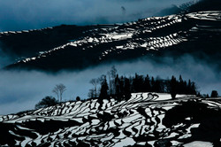 Yuanyang Rice Terraces #4