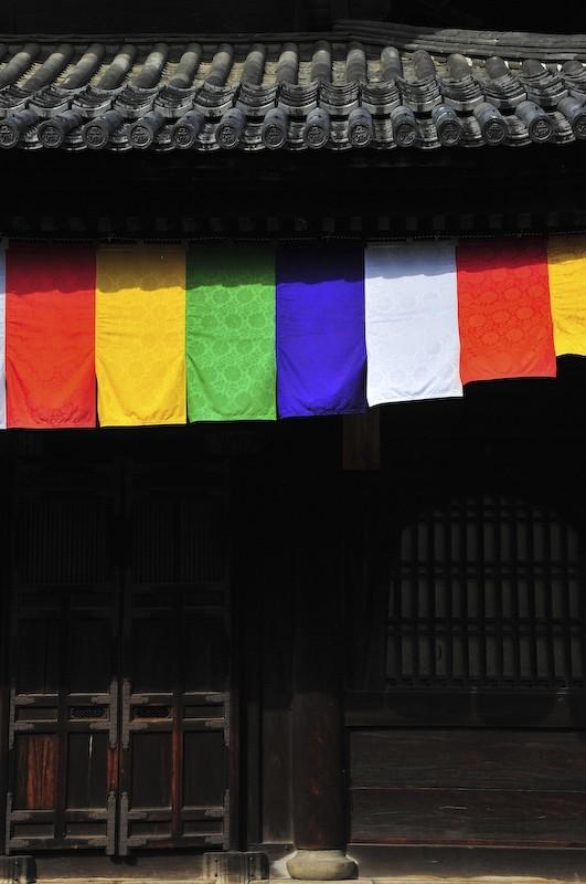 Myoshinji Temple (妙心寺)