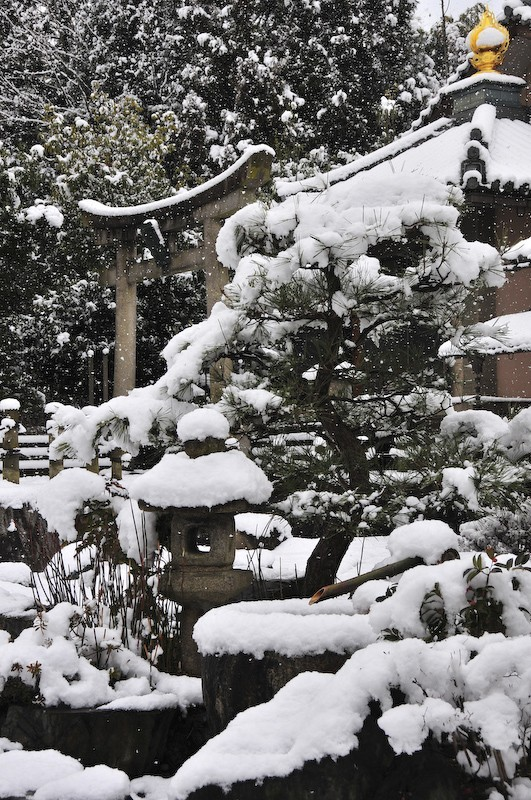 Snow, Iwakura, Kyoto