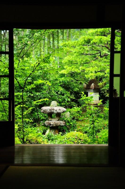 Hosenin Temple, Ohara (宝泉院 大原)