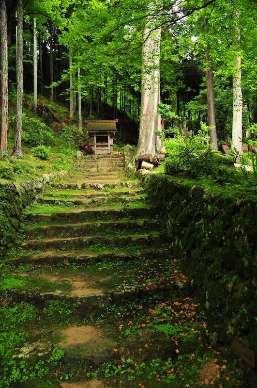 An Invitation to Worship, Ohara (勝林院 大原)