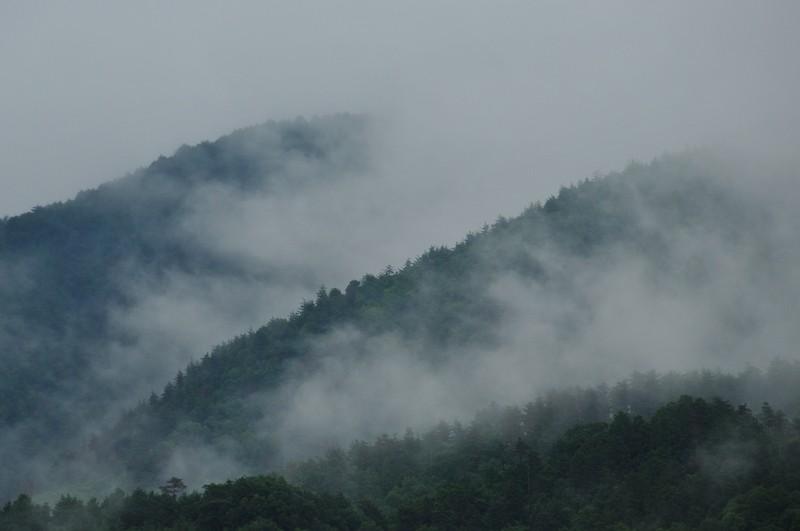Rainy Season (梅雨)