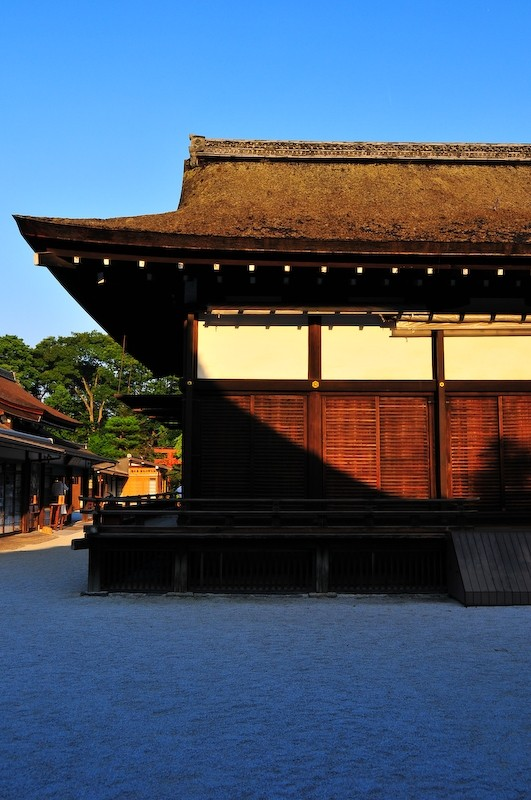 Evening Coming, Shimogamo Shrine (下鴨神社)