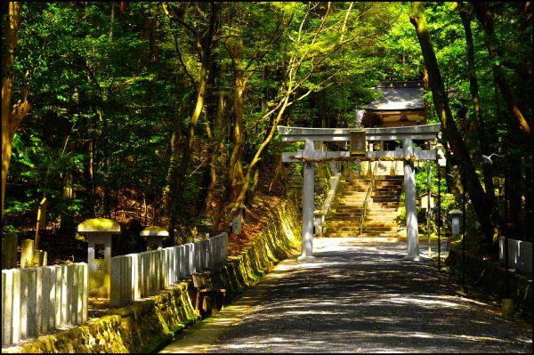 In Majesty, Sudo Shrine (崇道神社)
