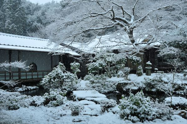 Winter Morning, Jisso-in Temple, 3