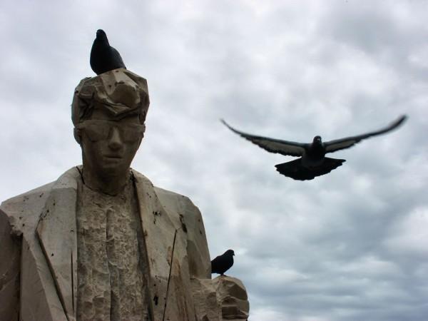 Birds VII