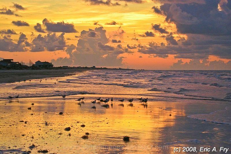 Gulf Coast Solidarity - Pipers Repost